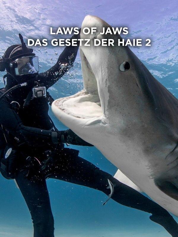 Laws of Jaws - Das Gesetz der Haie 2