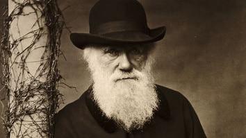 Darwin in der Kritik: Glauben in Amerika