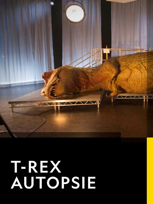 T-Rex Autopsie