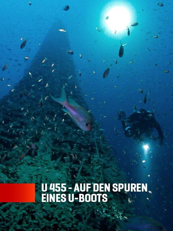 U 455 - Auf den Spuren eines U-Boots