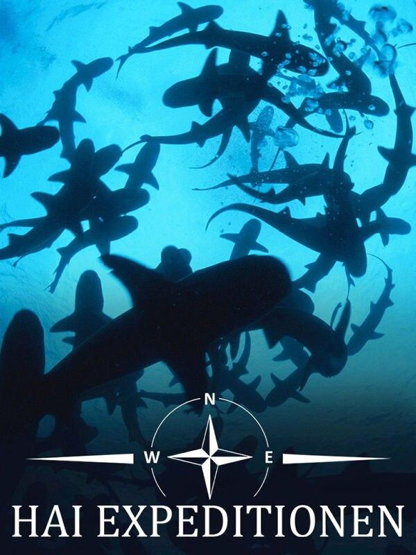 Auf der Spur der Alaska-Haie