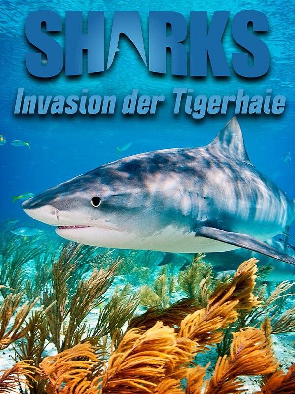 Invasion der Tigerhaie