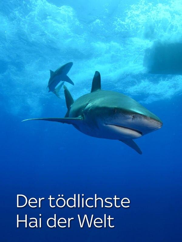 Der tödlichste Hai der Welt