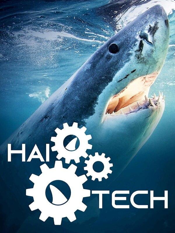 Sharks Gone Wild: Neue unglaubliche Hai-Clips