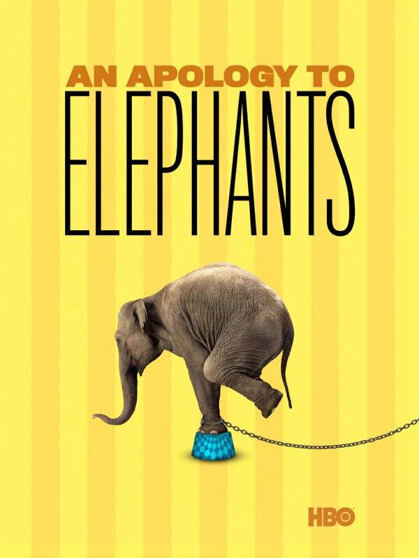 Ein Plädoyer für Elefanten