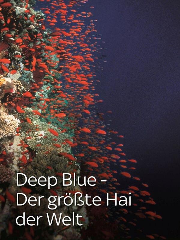 Deep Blue - Der größte Hai der Welt