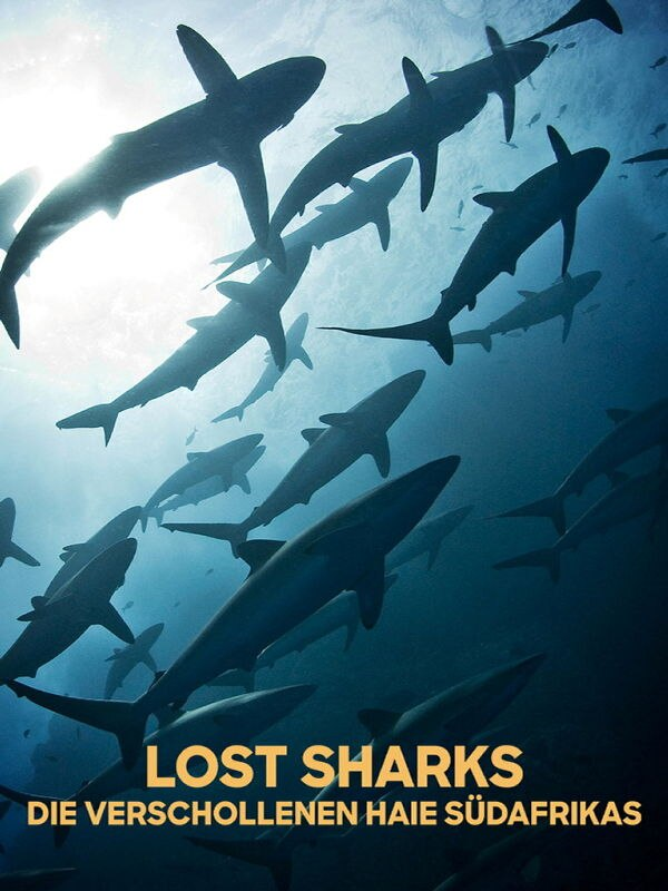 Lost Sharks - Die verschollenen Haie Südafrikas