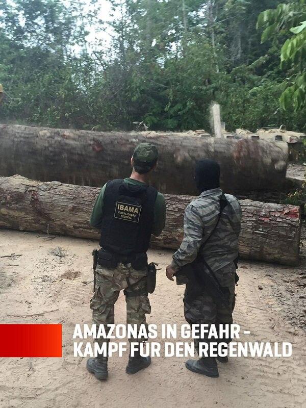 Amazonas in Gefahr - Kampf für den Regenwald