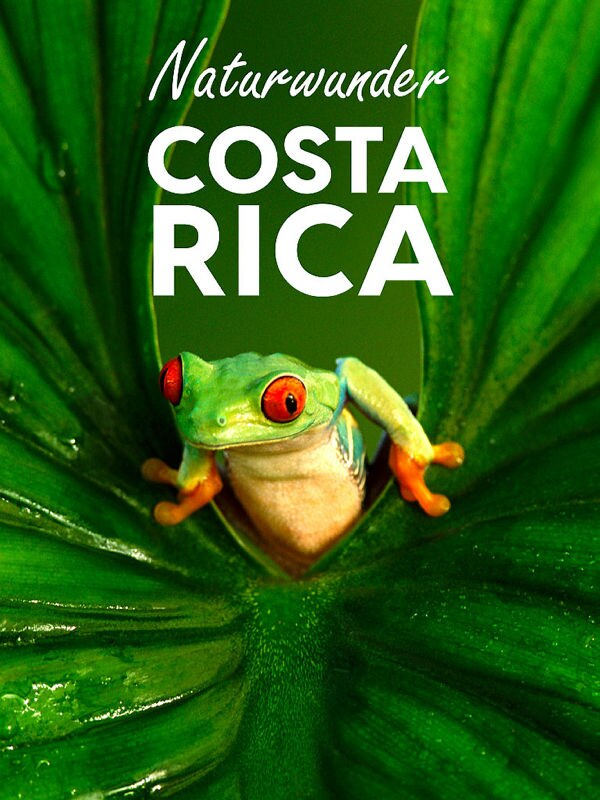 Naturwunder Costa Rica