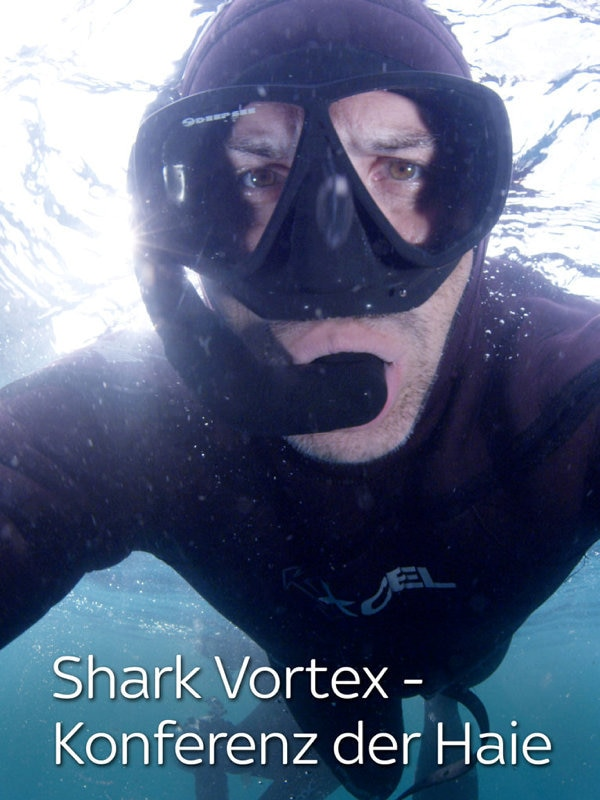 Shark Vortex - Konferenz der Haie
