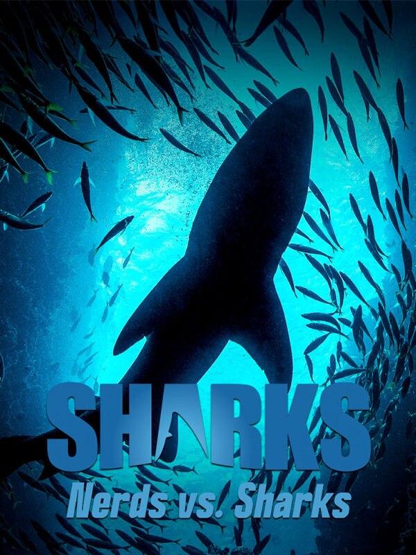 Nerds vs. Sharks
