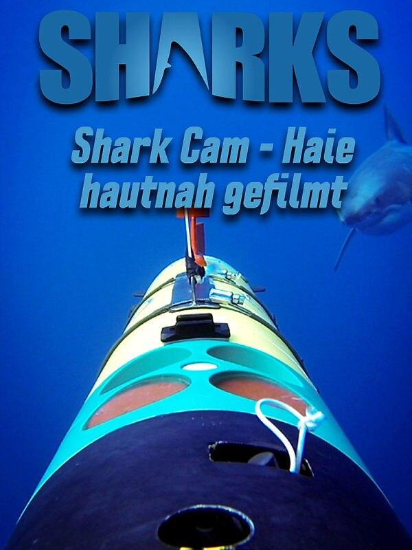 Shark Cam - Haie hautnah gefilmt!