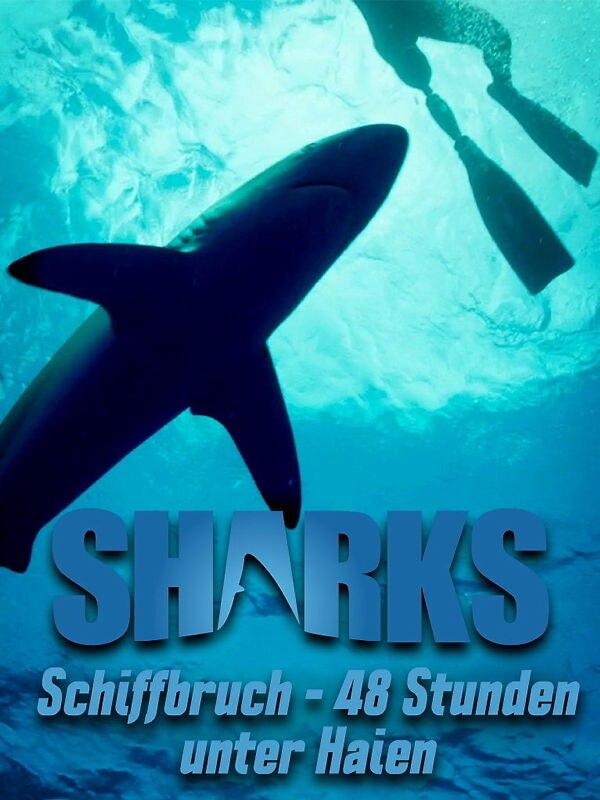 Schiffbruch - 48 Stunden unter Haien