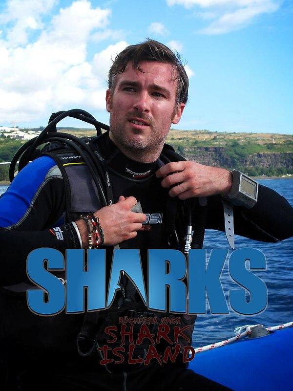 Rückkehr nach Shark Island