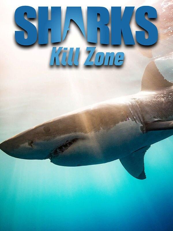 Kill Zone - Im Jagdrevier der Weißen Haie