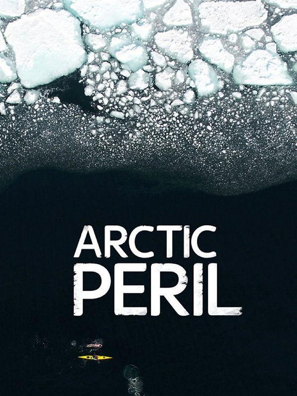 Die Gefährdung der Arktis