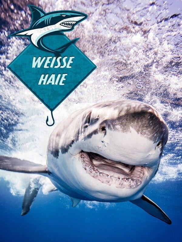 Im Geheimversteck der Weißen Haie